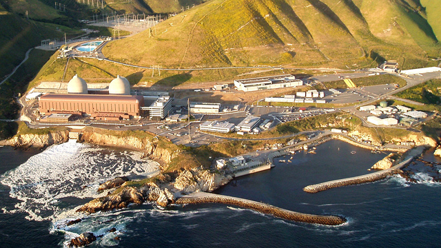 Get the Facts About the Diablo Canyon Sea Otter Research Project